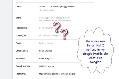 Relationshipstatus-googleprofi